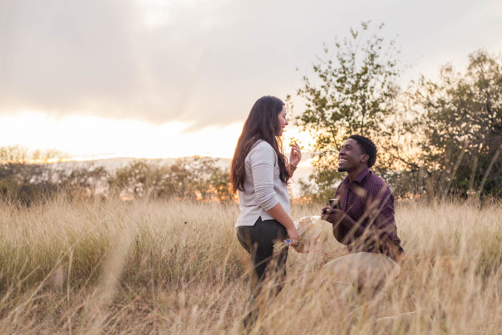 Leke & Hannah Proposal Perfect Moment