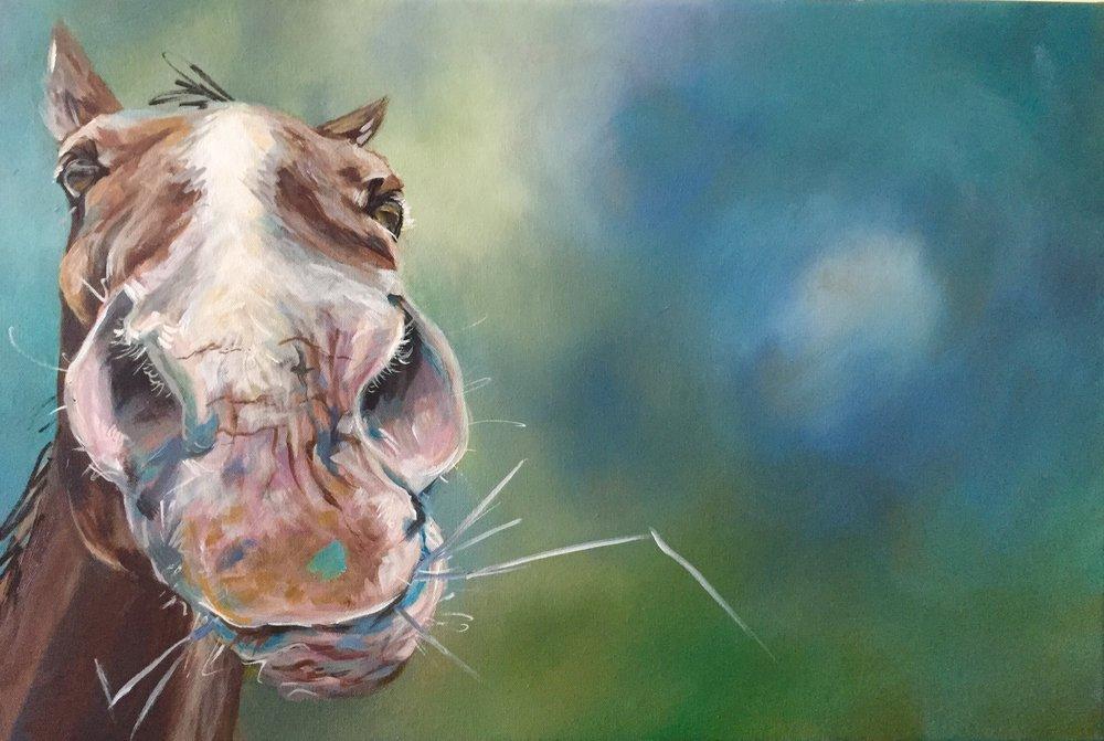 horse art.jpg