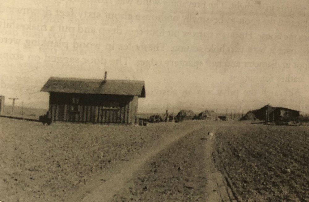 The Johnston Family farm circa 1916.