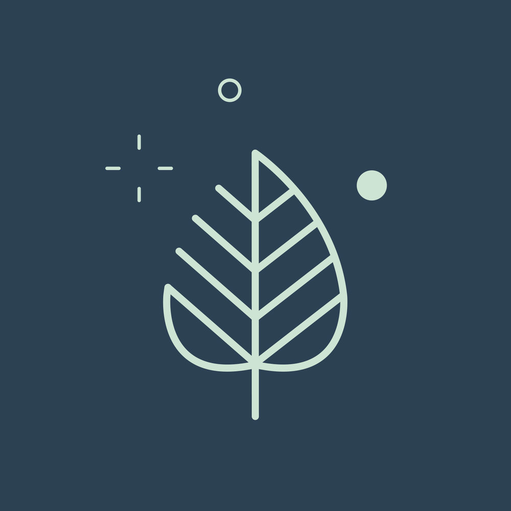 mini_mint_leaf.jpg