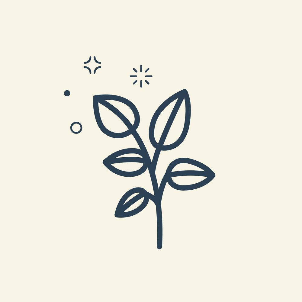 mini_mint_sprig.jpg