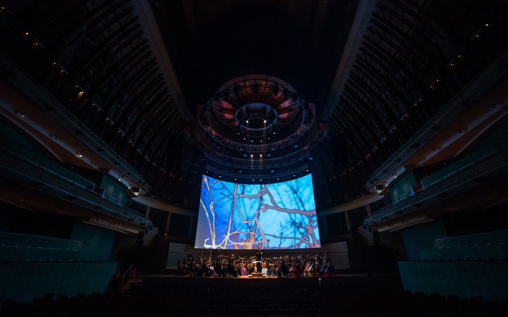 Mervin created multimedia visuals and lighting design for the YST Conservatory Orchestra's performance of Debussy's  Prélude à l'après-midi d'un faune  at the Esplanade Concert Hall, as part of the 2018  Dreams and Apparitions  season