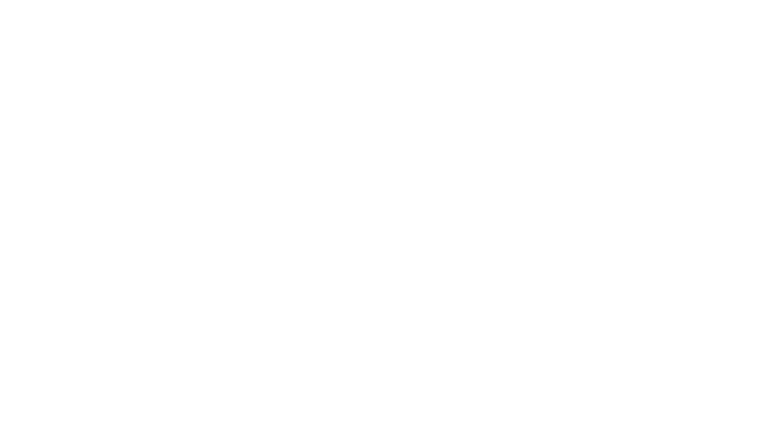 Black Arrow Enterprises