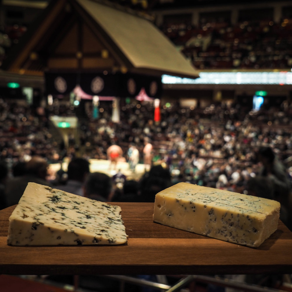 Taking pictures of blue cheese during the bouts was challenging - watch the bout or focus on the cheese?