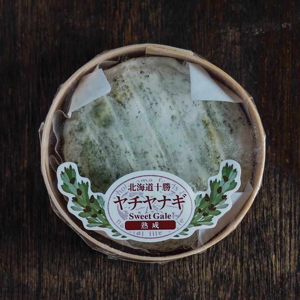 Yachiyanagi - Kyodogakusha