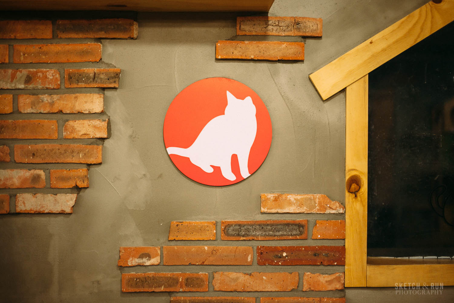 cat cafe, cafe, cat, decor, cat, hongdae