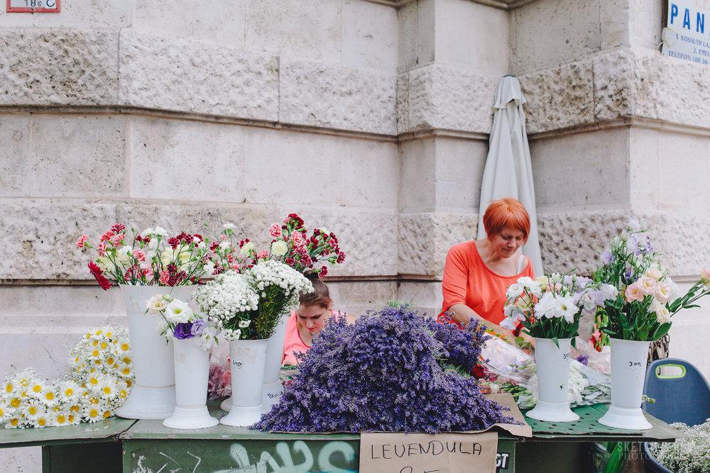 Budapest, lavender, flowers