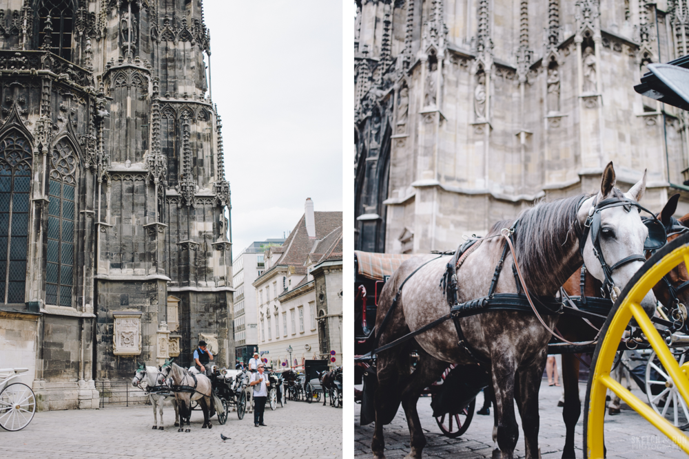 St Stephens Cathedral, mozart, street photography, vienna, austria, horses