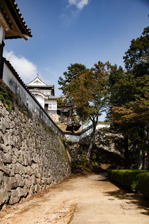 matsuyama-3.jpg