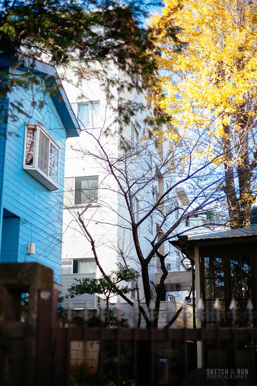 shimokita_details_vertical-4.jpg