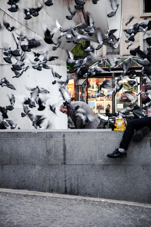 pigeonman-15.png