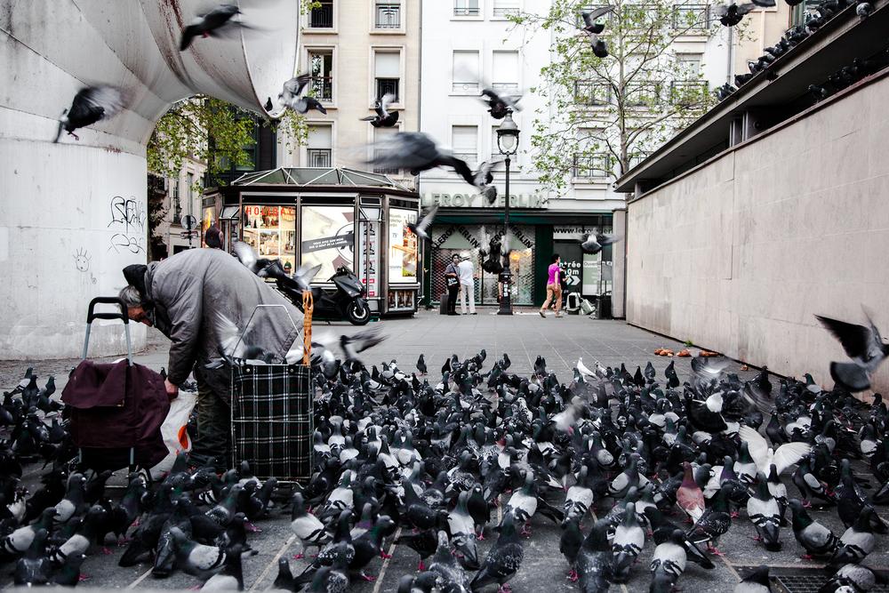 pigeonman-3.png