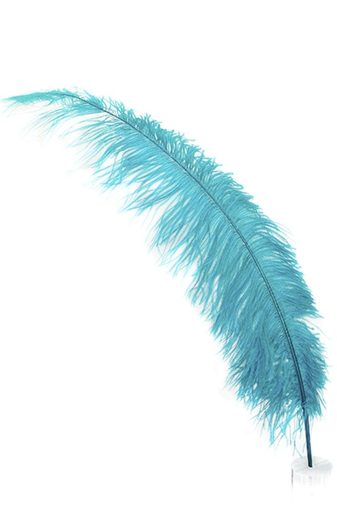 feather-03.jpg