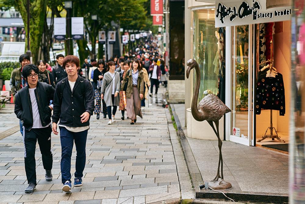 20171020_japan__DSC5055.jpg
