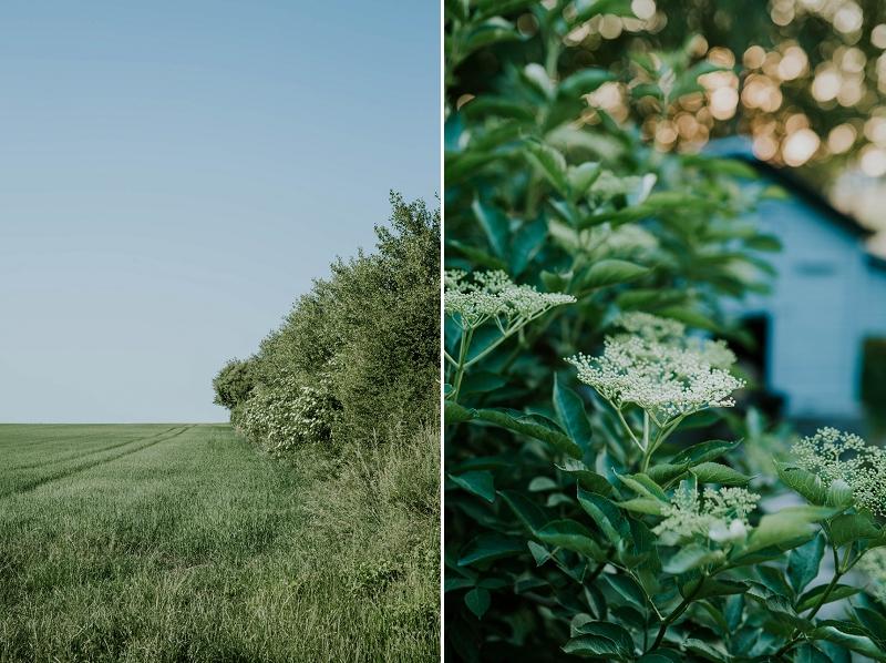 sigridsminde-garden-wedding_4442.jpg