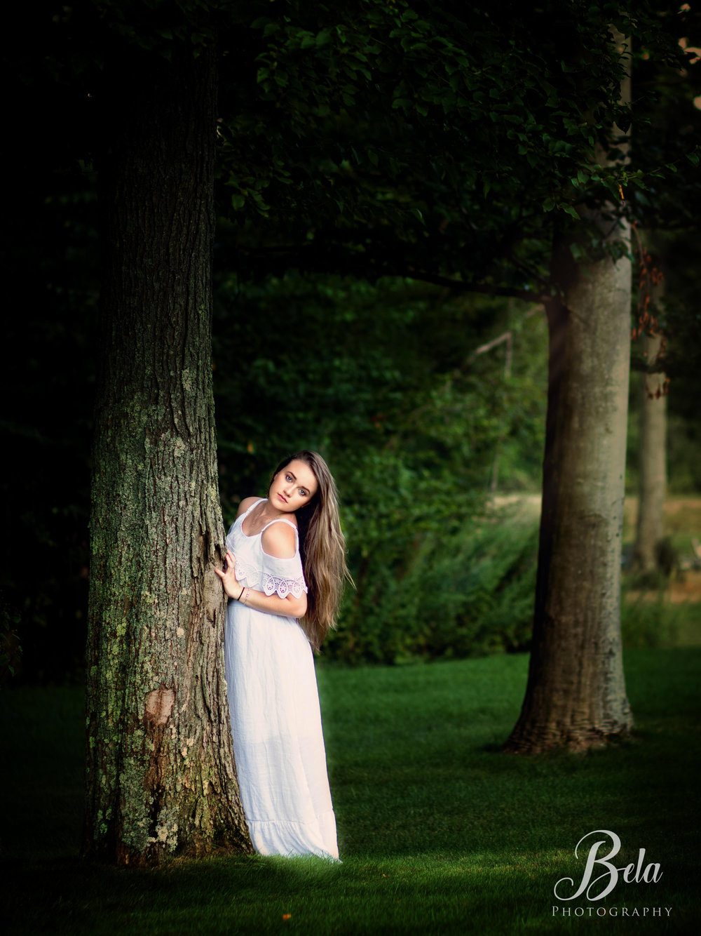 Into the woods - Photography Collection