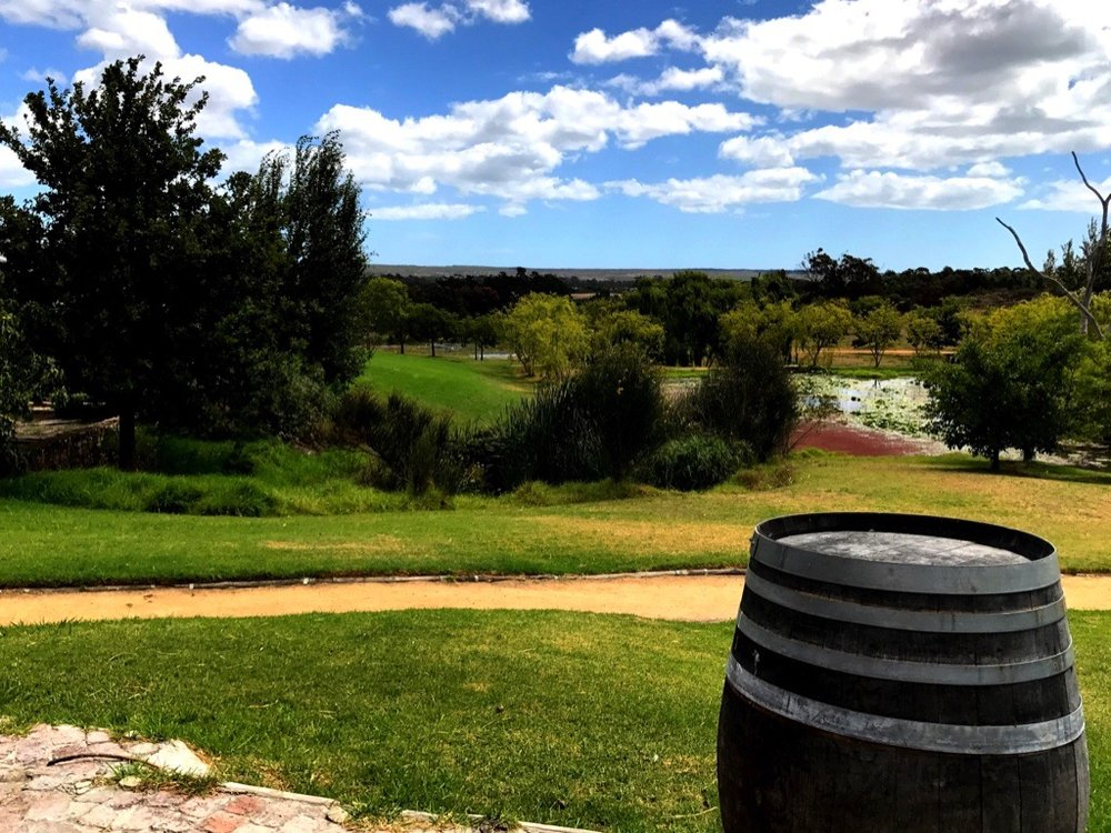 View from Fynbos Distillery
