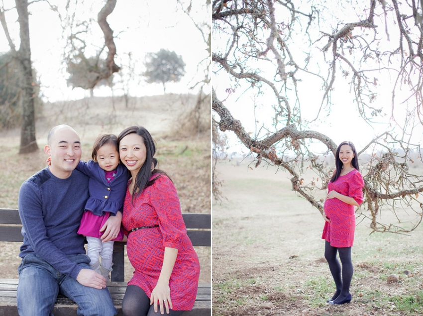 0001_Napa_Maternity_Photographer_Lori_Paladino_Photography_KFamily_blog.jpg