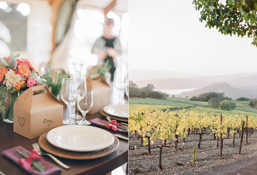 Chappellet Winery Napa Elopement