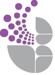 www.abbeyfieldschool.org.uk