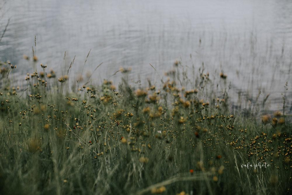 Michigan-Lake-House-Wedding-Madeline-Patrick-Vafa-Photo-11.jpg