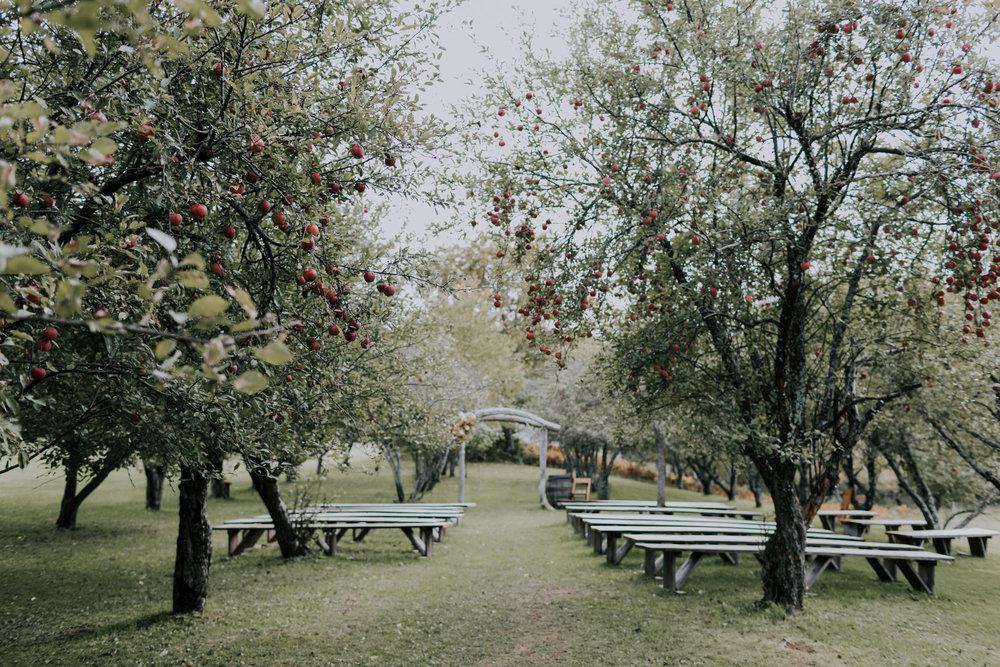 Belsolda-Farm-Wedding-Marquette-MI-Addie-James-Vafa-Photo343.jpg