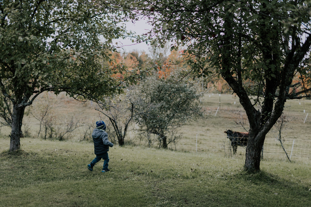 Belsolda-Farm-Wedding-Marquette-MI-Addie-James-Vafa-Photo387.jpg