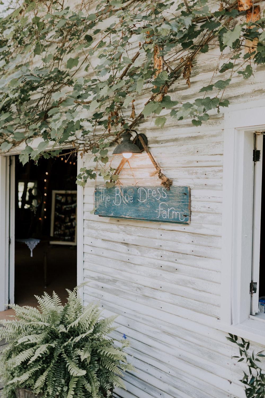 Blue-Dress-Barn-Michigan-Wedding-April-Seth-Vafa-Photo630.jpg