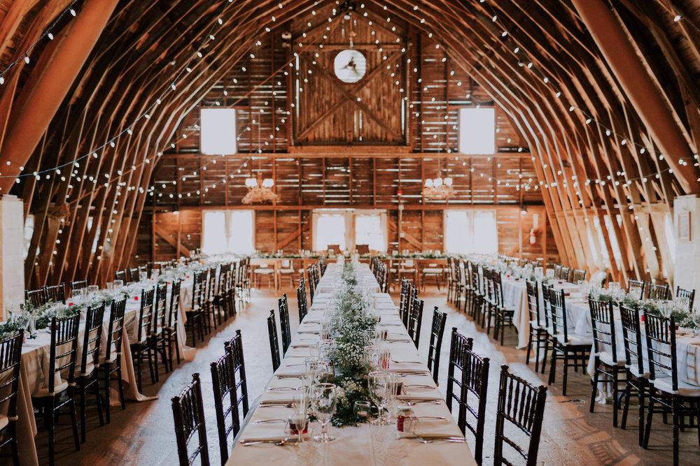 Blue-Dress-Barn-Michigan-Wedding-April-Seth-Vafa-Photo641.jpg