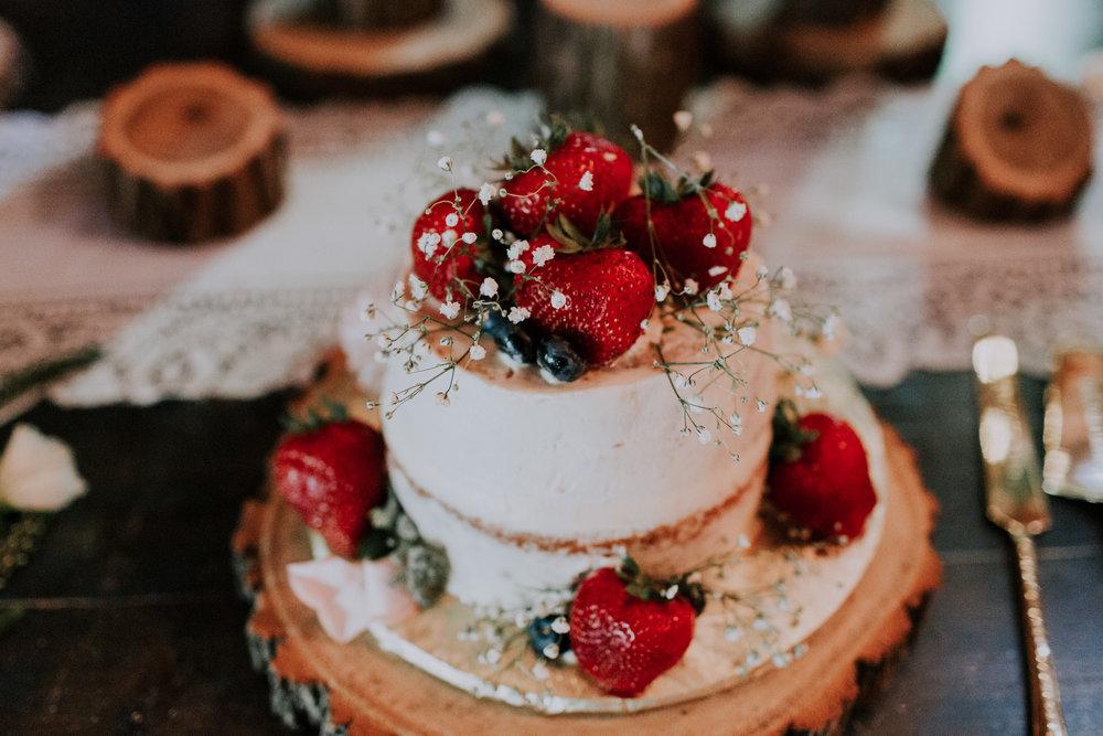 Blue-Dress-Barn-Michigan-Wedding-April-Seth-Vafa-Photo672.jpg