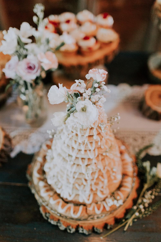 Blue-Dress-Barn-Michigan-Wedding-April-Seth-Vafa-Photo668.jpg