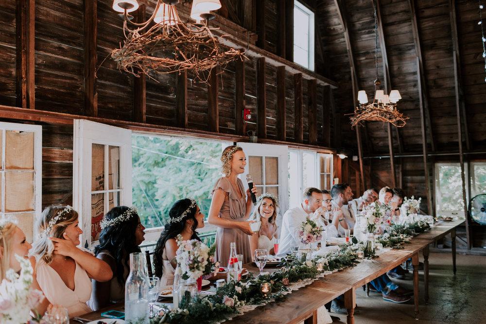 Blue-Dress-Barn-Michigan-Wedding-April-Seth-Vafa-Photo731.jpg
