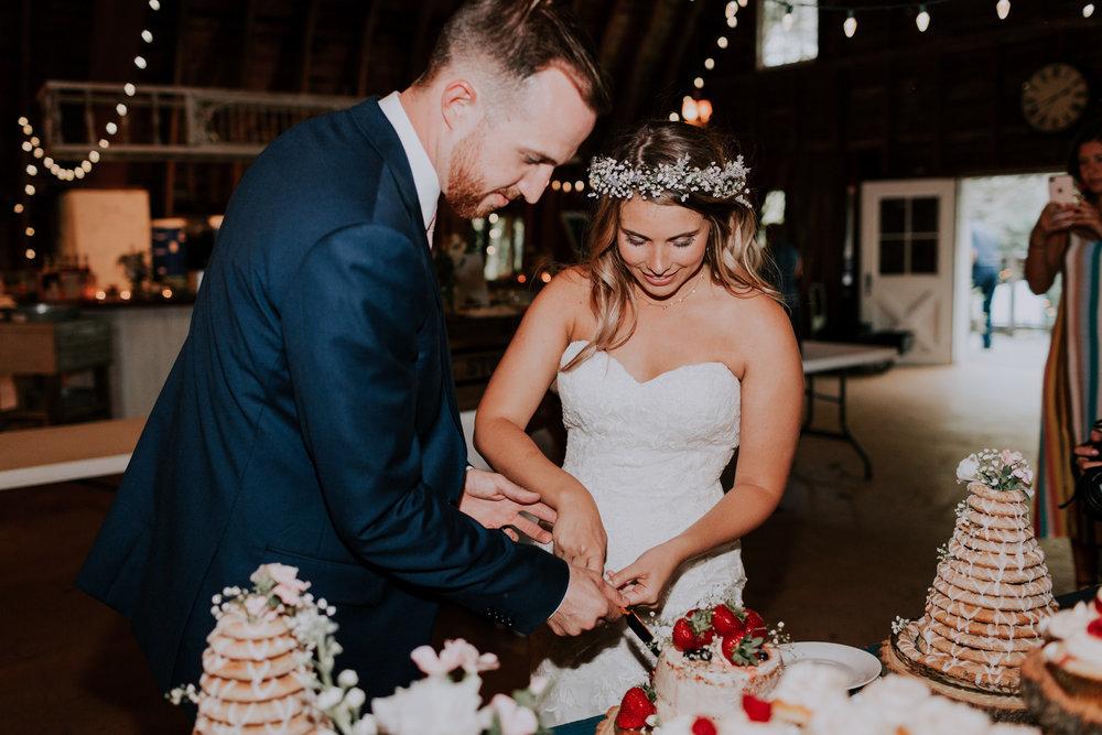 Blue-Dress-Barn-Michigan-Wedding-April-Seth-Vafa-Photo759.jpg