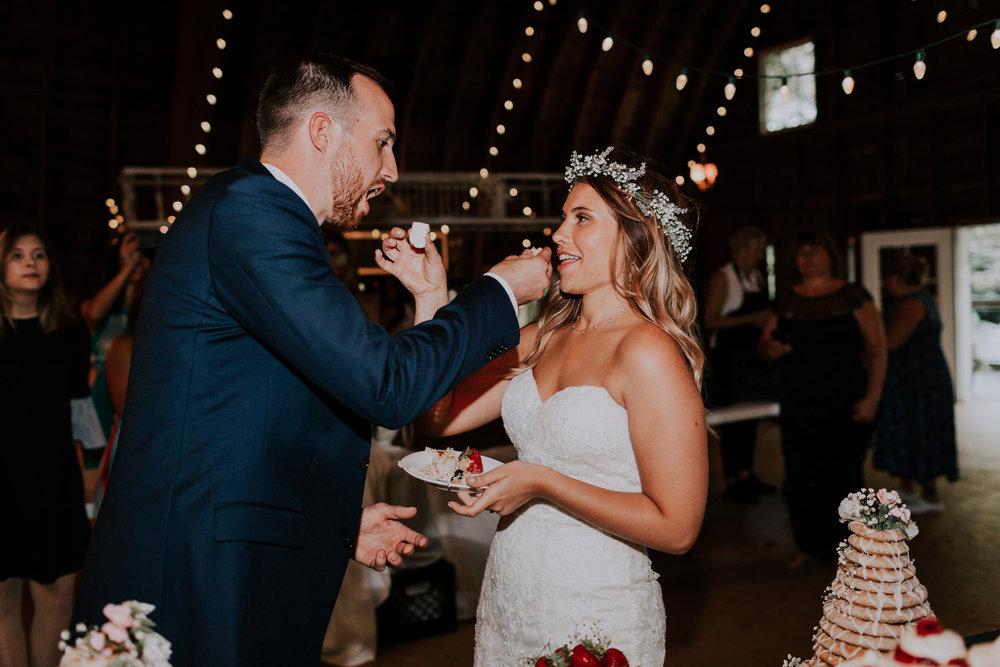 Blue-Dress-Barn-Michigan-Wedding-April-Seth-Vafa-Photo765.jpg