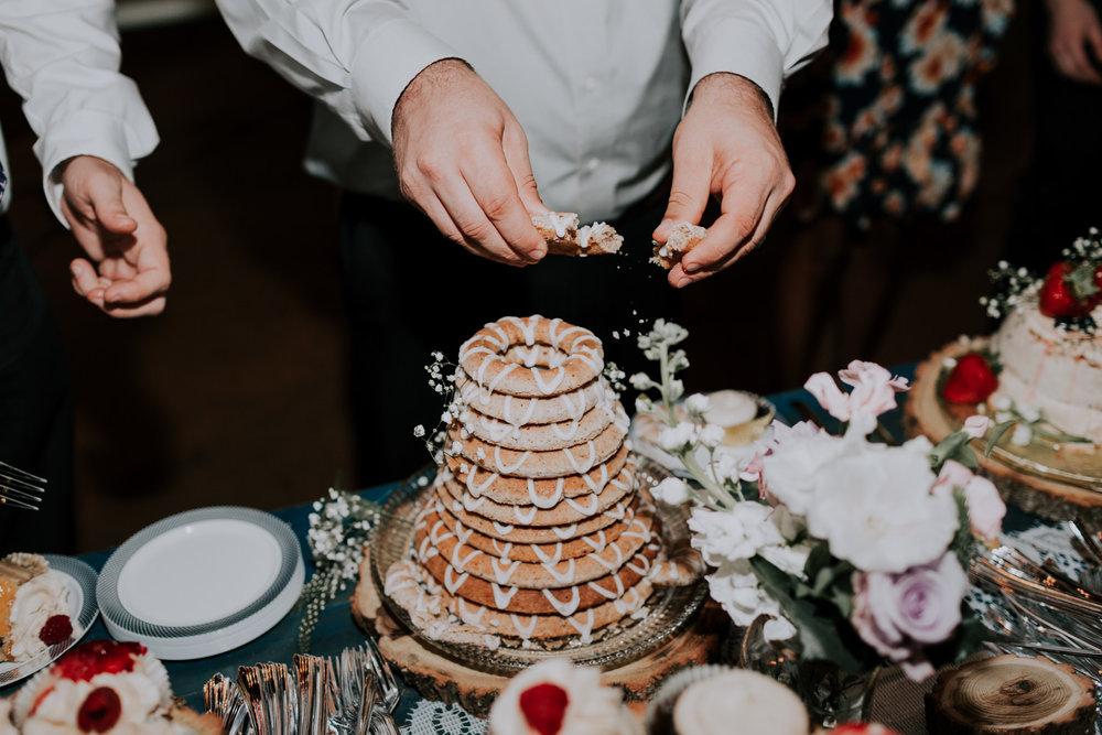 Blue-Dress-Barn-Michigan-Wedding-April-Seth-Vafa-Photo777.jpg