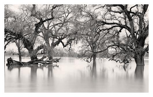 Pulsing River