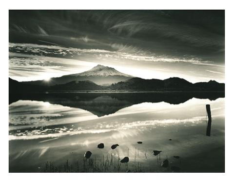 Mount Shasta Rising