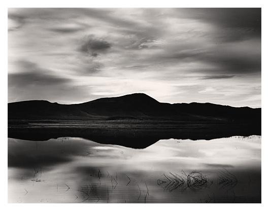 Mirror Wetland