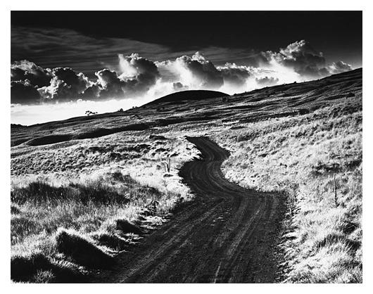 Road to Mauna Kea