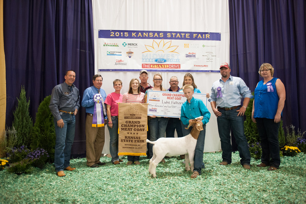 2015 Luke Grand Champion Market Goat Kansas State Fair.  Schrank genetics bred by Bill Mein