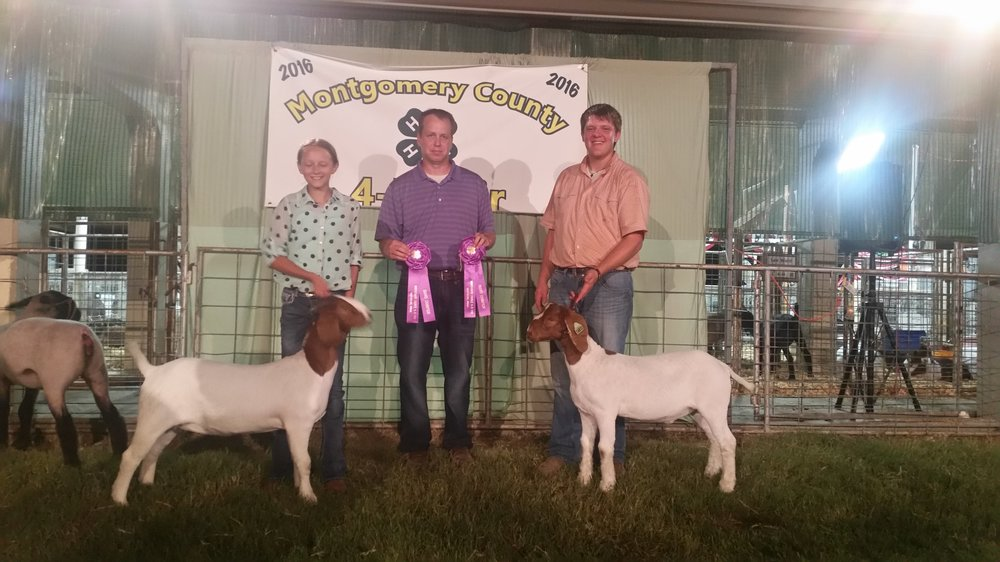 Grand Champion Breeding Doe and Market Wether Montgomery County 4-H Fair 2016 Champions