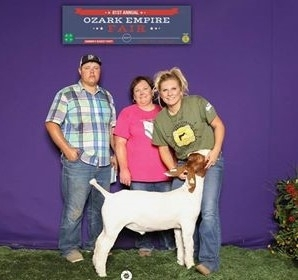 2017 Reserve Grand Champion Ozark Empire Gold Buckle Gala