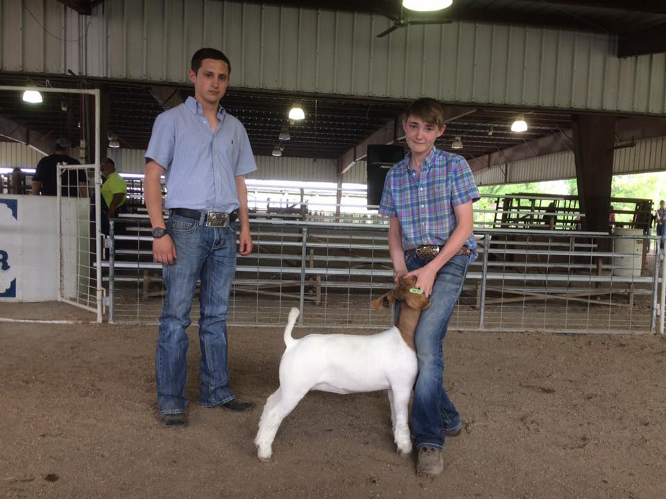 Clay Brillhart Champion Linn County Spring Show