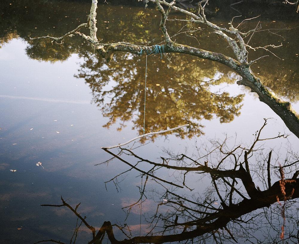 ropeswing river.jpg