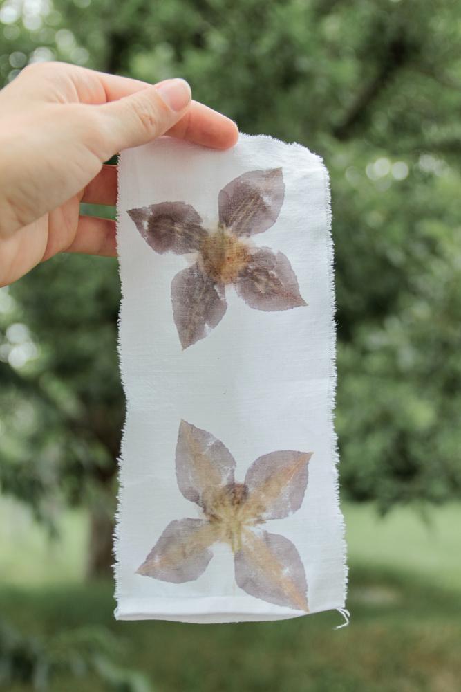 sarah-kirsten-flower-pounding10
