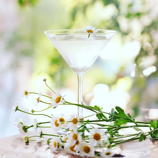 Happy Monday everyone ! How lovely, it's still light and cocktail hour too! Easy martini with our Juniper-Lime-Lemon Verben and some vodka...just shake 0.5 oz of mixer with 2.5 oz of vodka with ice ... camomile garnish is so spring☘️ . . . #cocktailhour #cocktails #martini #vodka #gin #juniper #camomille #spring #womenownedbusiness #handmade #smallbatch #foodie #muddleandwilde