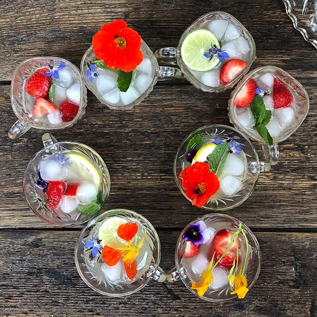 Making good use of our vintage crystal punch cups! All you need is Muddle & Wilde Sweet Woodruff-Lemon, lots of fresh fruit and flowers, lemonade and ice.🌸. . . . #punch #punchbowl #homemixology #womenownedbusiness #mixology #lemonade #california #kids #non-alcoholic #nonalcoholic #sober #mocktail #communal #goodvibes #muddleandwilde