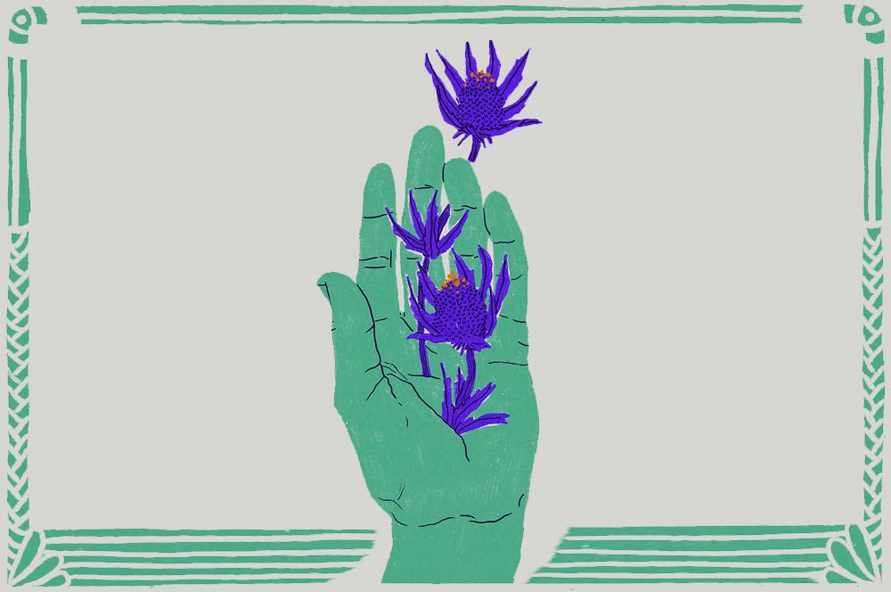 Illustrazione Cecilia Campironi