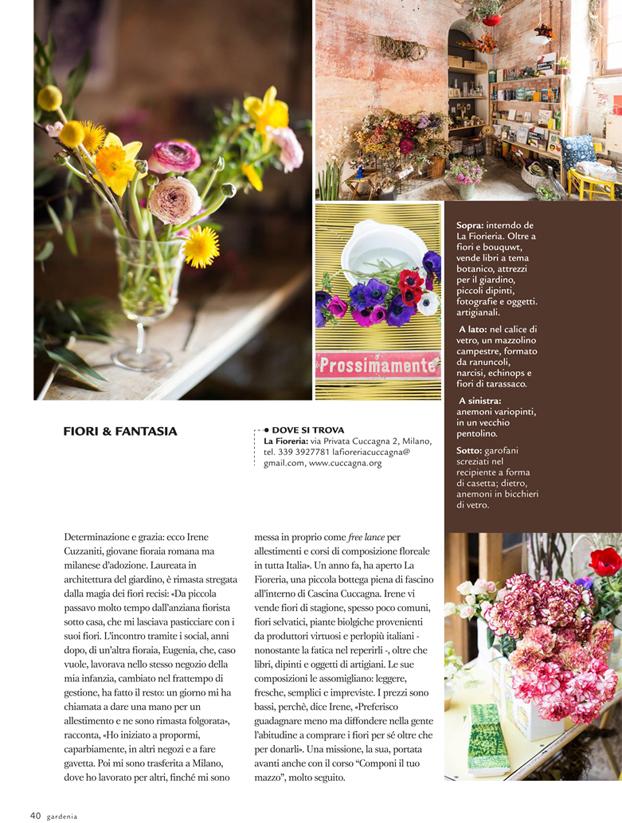 gardenia 2 copia.jpg