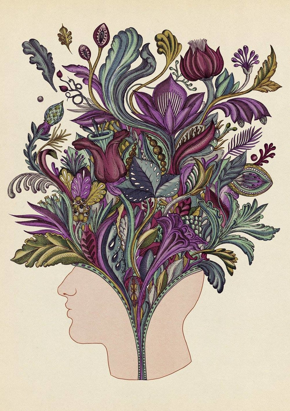 Illustrazione  Katie Scott